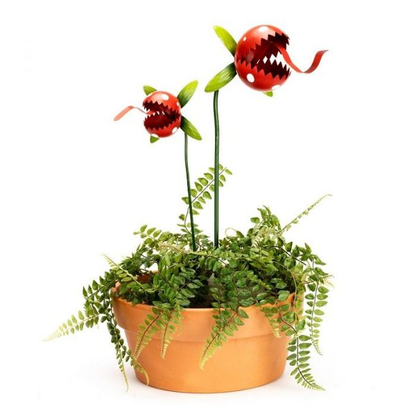 Carnivorous red plant 2