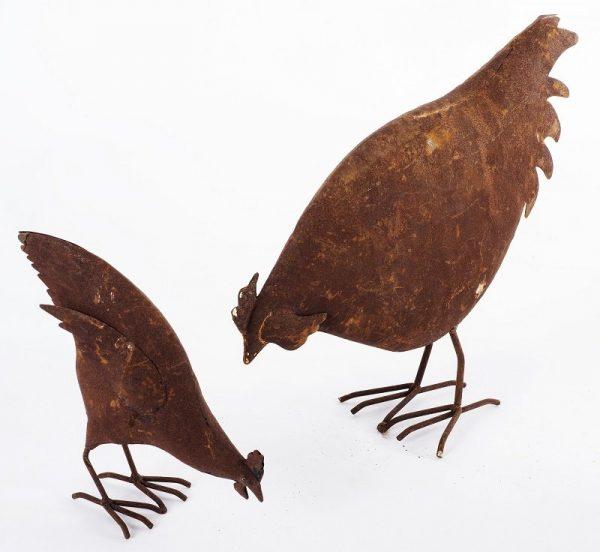 Feeding Chicken Lrg Sml 5700