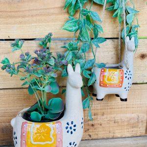 Llama Planters