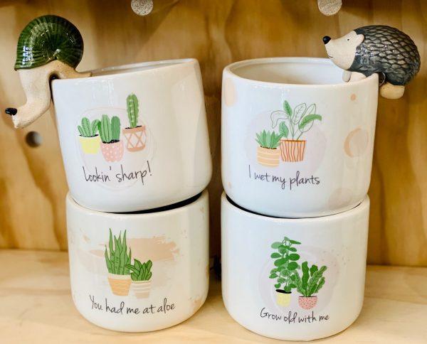 Assorted Ceramic Quote Pots