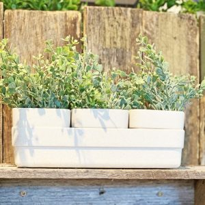 Micro Herb Planter