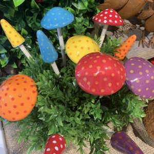 Mixed Couloured Mushrooms 1