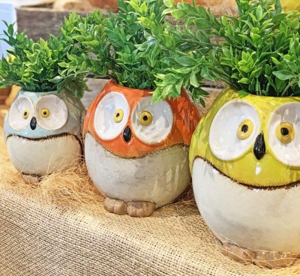 Owl Set 3