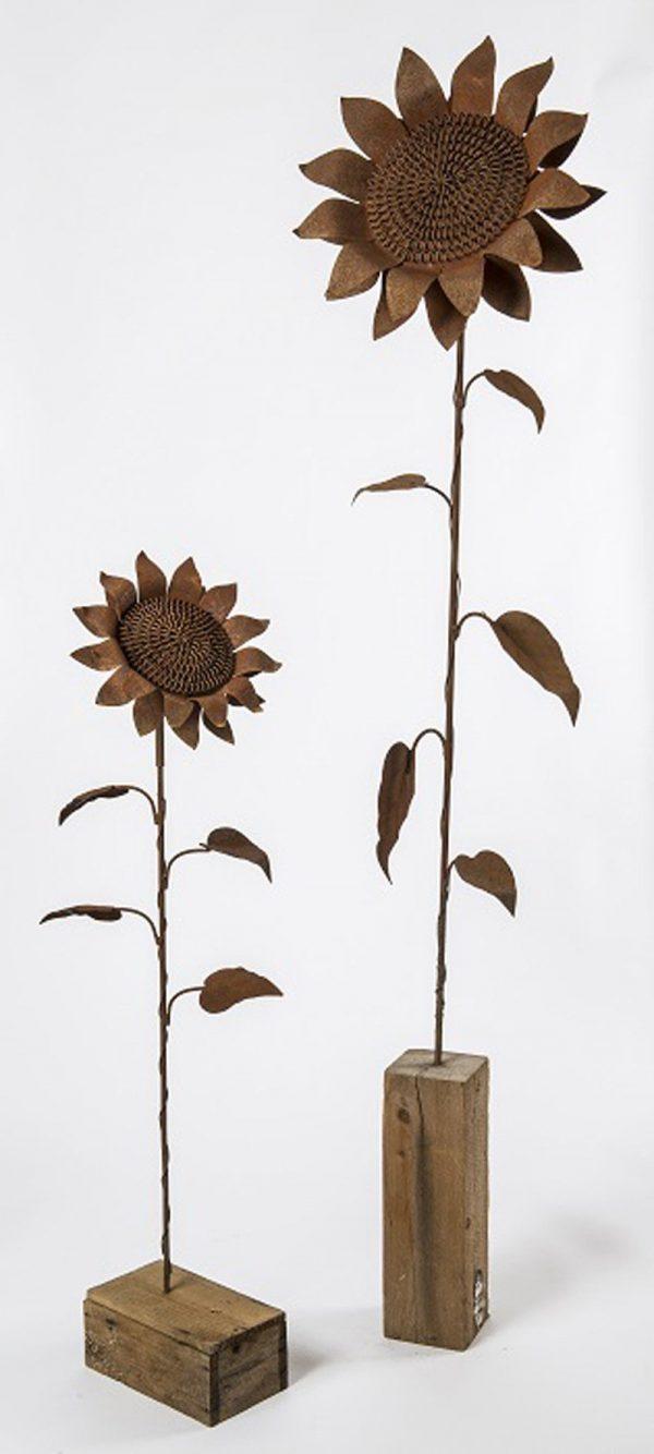 Rusted Sunflower Head 1
