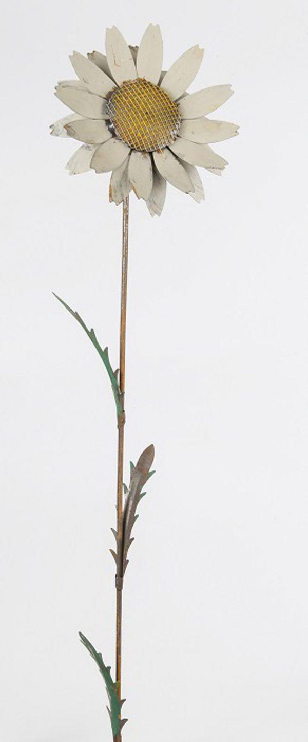 White Daisy stake