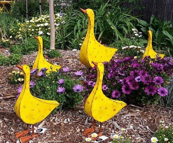 Yellow Ducks 1