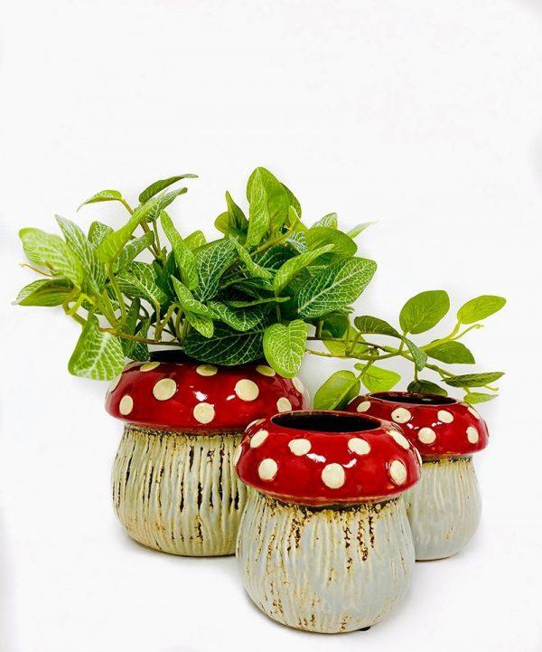 mushroom pots
