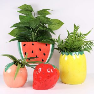 Assorted Fruit Planters